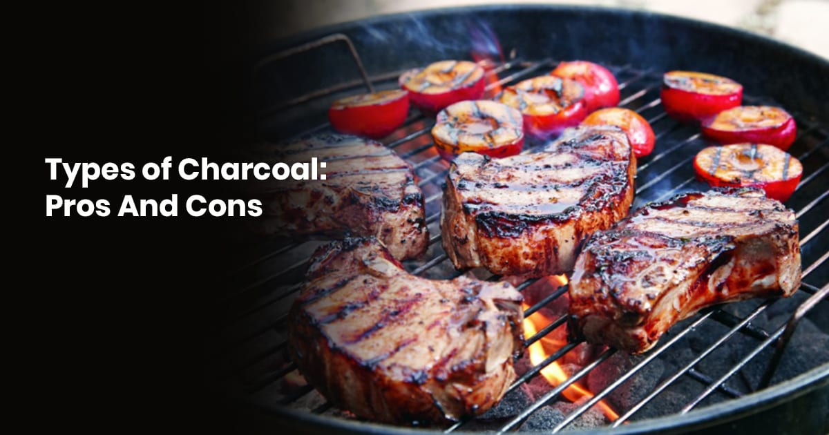 Types Of Charcoal Pros And Cons